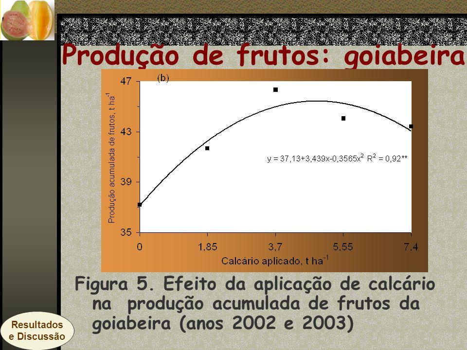 Produção de frutos: goiabeira Figura 5. Efeito da aplicação de calcário na produção acumulada de frutos da goiabeira (anos 2002 e 2003) Resultados e D