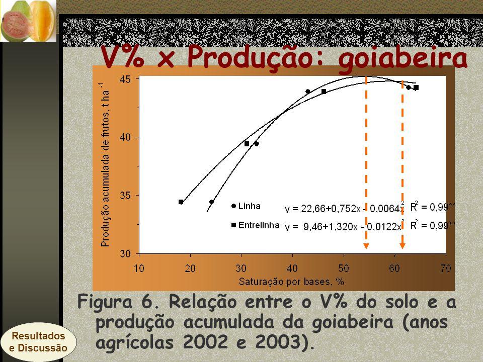 Figura 6. Relação entre o V% do solo e a produção acumulada da goiabeira (anos agrícolas 2002 e 2003). V% x Produção: goiabeira Resultados e Discussão