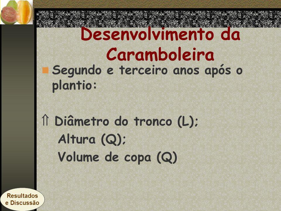 Segundo e terceiro anos após o plantio: Diâmetro do tronco (L); Altura (Q); Volume de copa (Q) Desenvolvimento da Caramboleira Resultados e Discussão