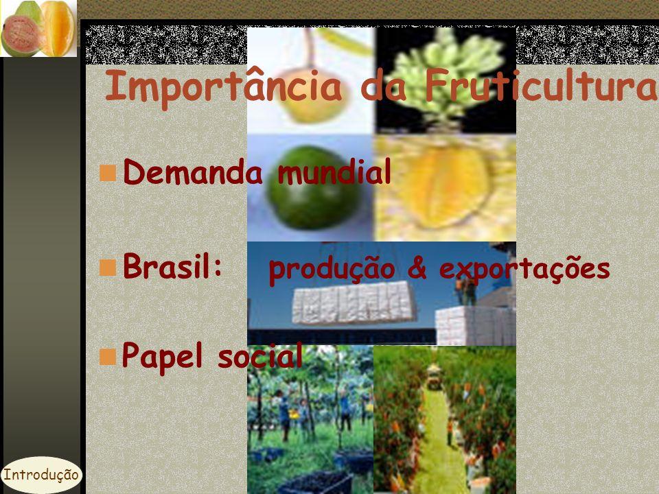 Importância da Fruticultura Demanda mundial Brasil: p rodução & exportações Papel social Introdução