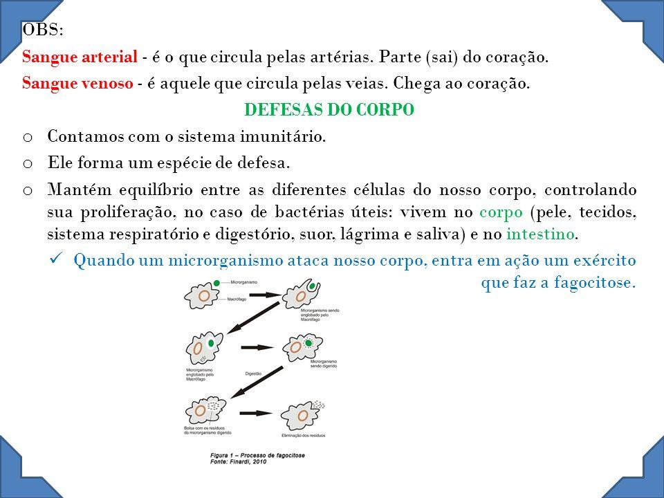 CÉLULAS DO SISTEMA IMUNITÁRIO Neutrófilos - Que fagocitam e destroem bactérias; Basófilos - Que segregam substâncias como a heparina, de propriedades anticoagulantes, e a histamina; Eosinófilos - Que aumentam seu número e se ativam na presença de certas infecções e alergias; Linfócitos - Que desempenham um papel importante na produção de anticorpos e na imunidade celular; ´ Monócitos - Que digerem substâncias estranhas não bacterianas.