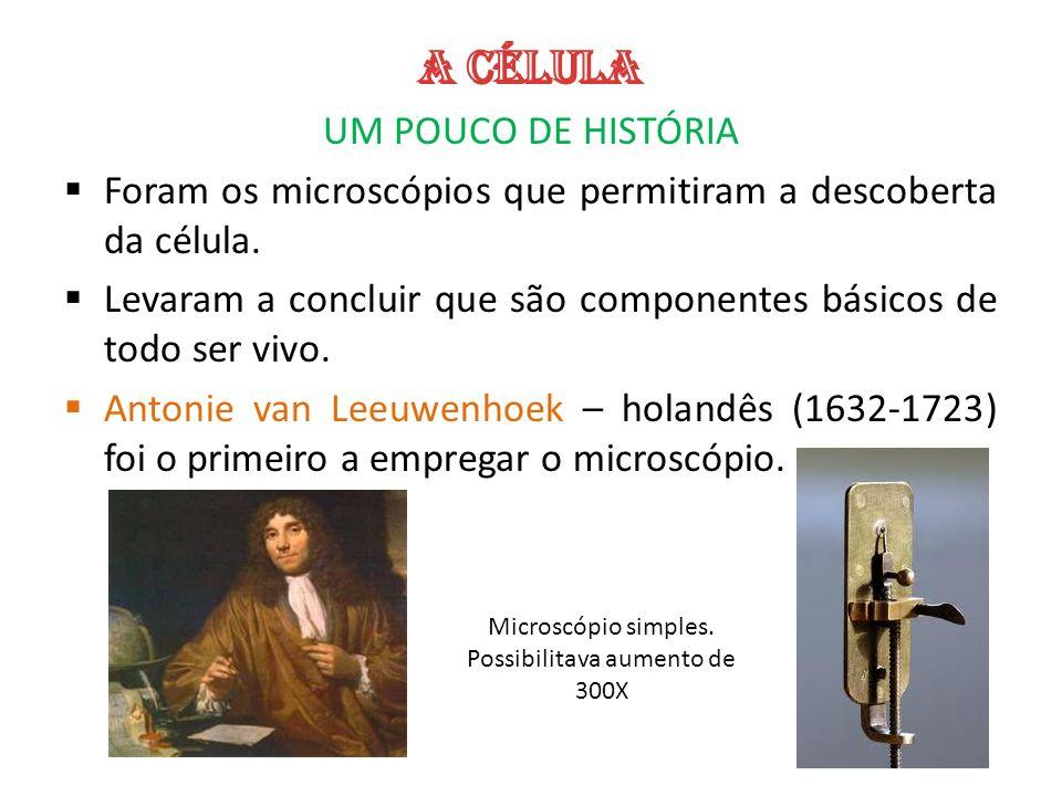 UM POUCO DE HISTÓRIA Foram os microscópios que permitiram a descoberta da célula. Levaram a concluir que são componentes básicos de todo ser vivo. Ant