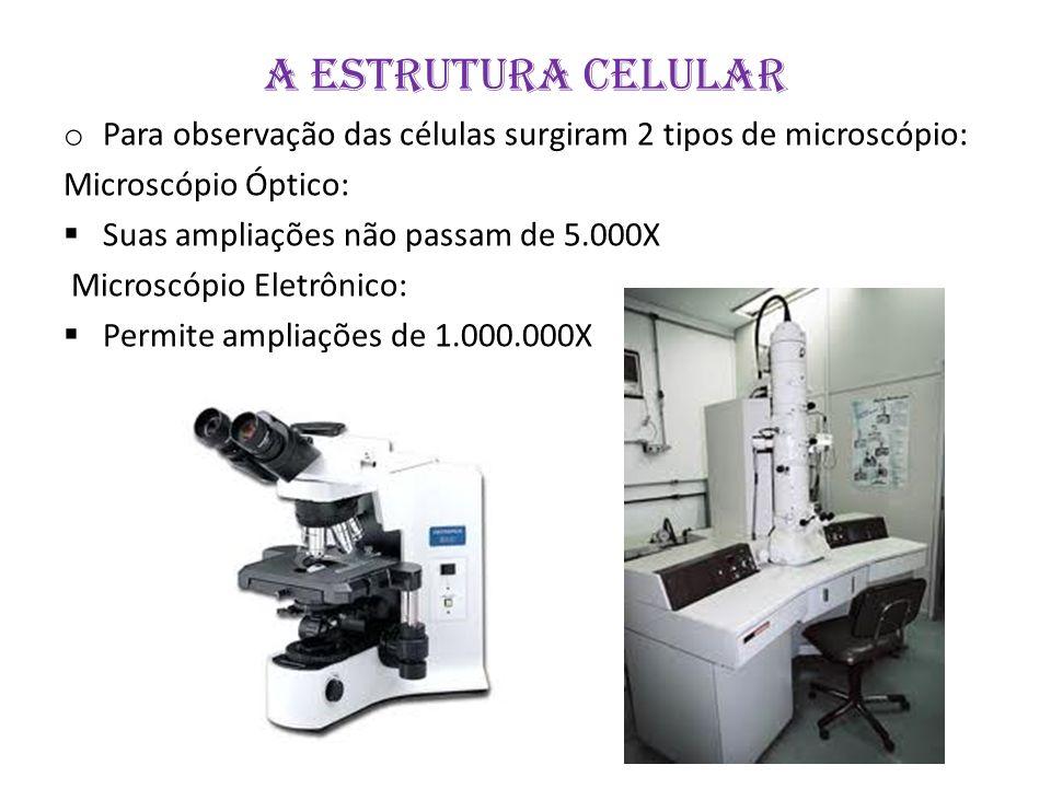 A ESTRUTURA CELULAR o Para observação das células surgiram 2 tipos de microscópio: Microscópio Óptico: Suas ampliações não passam de 5.000X Microscópi