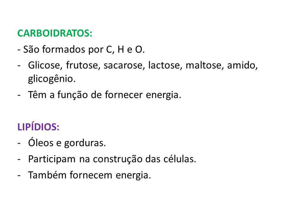 CARBOIDRATOS: - São formados por C, H e O. -Glicose, frutose, sacarose, lactose, maltose, amido, glicogênio. -Têm a função de fornecer energia. LIPÍDI