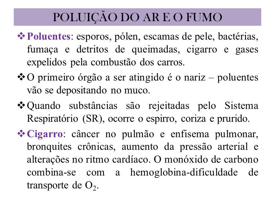 POLUIÇÃO DO AR E O FUMO Poluentes: esporos, pólen, escamas de pele, bactérias, fumaça e detritos de queimadas, cigarro e gases expelidos pela combustão dos carros.
