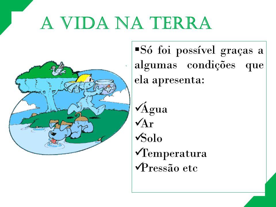 A VIDA NA TERRA Só foi possível graças a algumas condições que ela apresenta: Água Ar Solo Temperatura Pressão etc