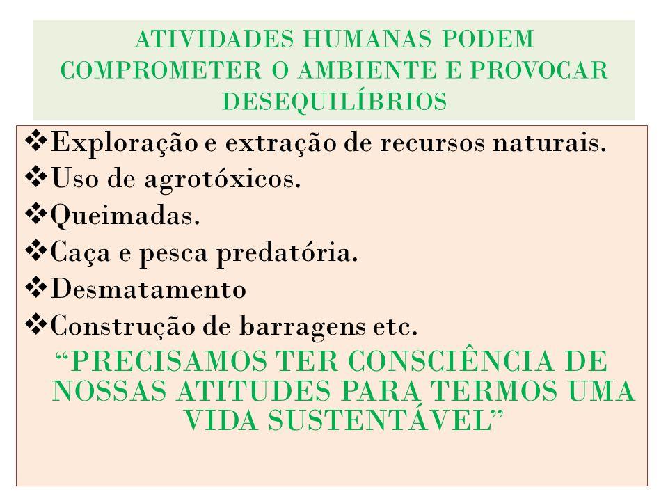 ATIVIDADES HUMANAS PODEM COMPROMETER O AMBIENTE E PROVOCAR DESEQUILÍBRIOS Exploração e extração de recursos naturais. Uso de agrotóxicos. Queimadas. C