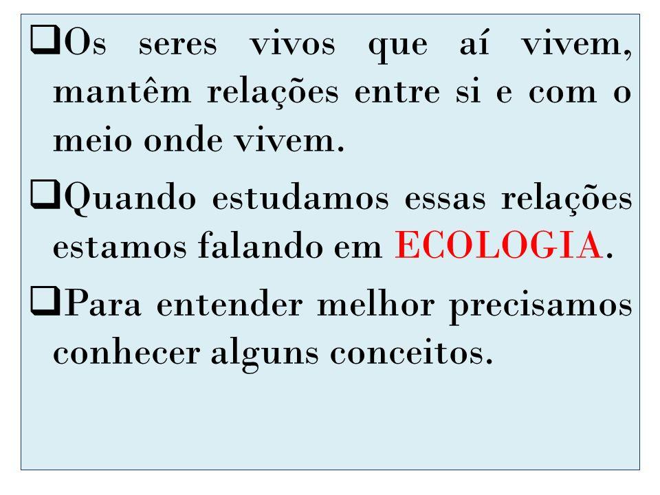 Os seres vivos que aí vivem, mantêm relações entre si e com o meio onde vivem. Quando estudamos essas relações estamos falando em ECOLOGIA. Para enten