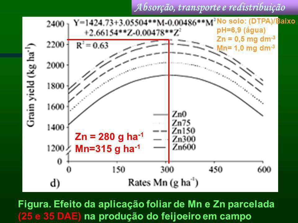 Figura. Efeito da aplicação foliar de Mn e Zn parcelada (25 e 35 DAE) na produção do feijoeiro em campo Absorção, transporte e redistribuição Zn = 280