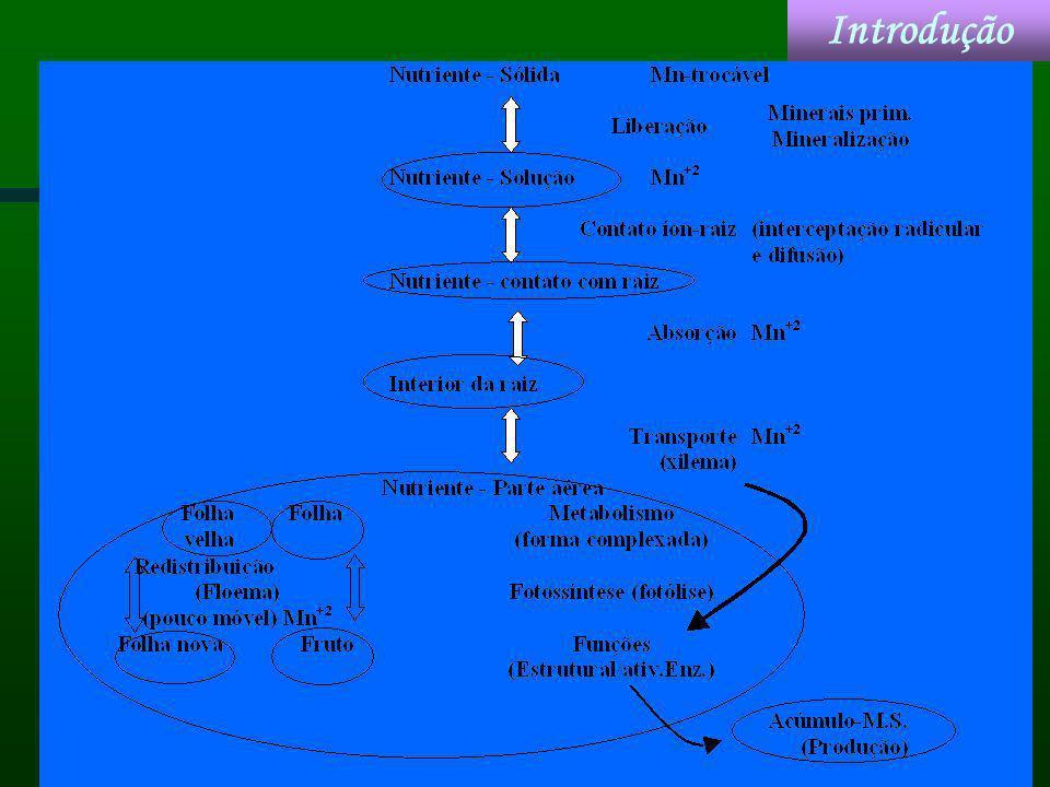 1- Como o aumento do valor pH do solo aumenta disponibilidade dos micros Mn, Fe, Cu, Cl e Mo.