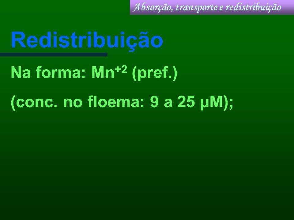 Redistribuição Na forma: Mn +2 (pref.) (conc. no floema: 9 a 25 µM); Absorção, transporte e redistribuição