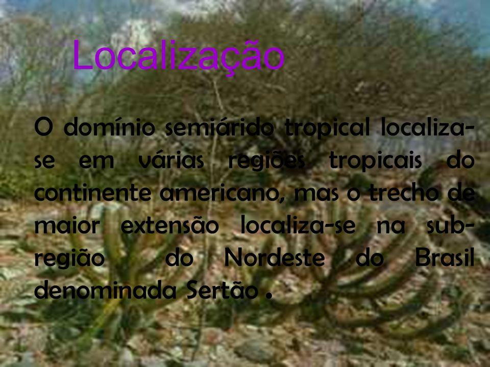 Localização O domínio semiarido tropical localiza-se em várias regiões tropicais do continente americano, mas o trecho de maior extensão localiza-se n