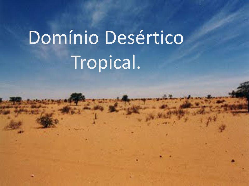 Domínio Desértico Tropical Domínio Desértico Tropical.