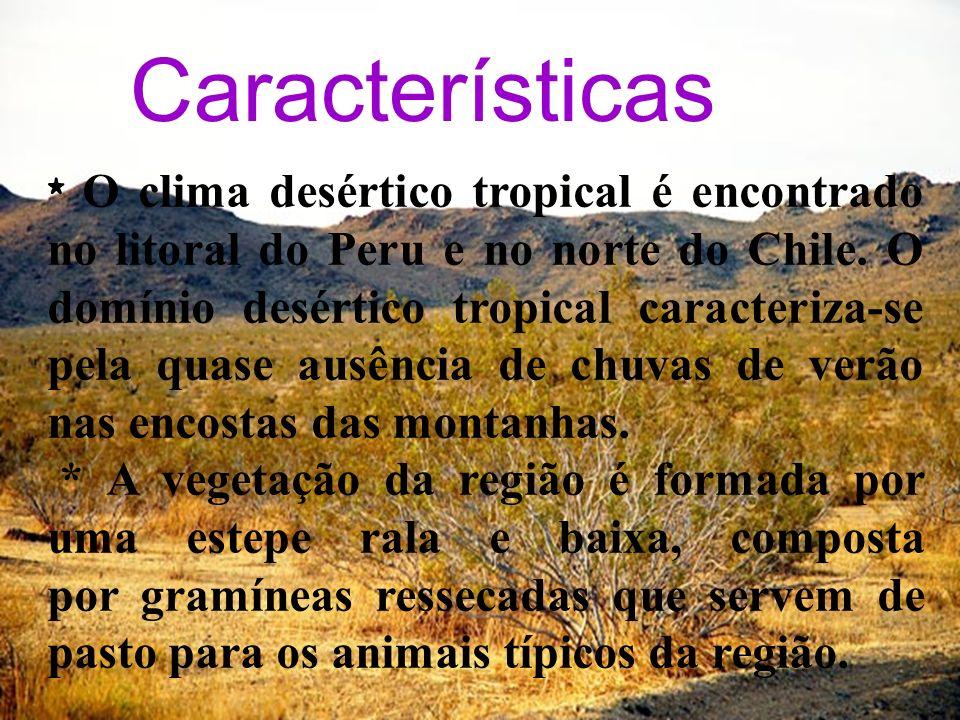 Características * O clima desértico tropical é encontrado no litoral do Peru e no norte do Chile. O domínio desértico tropical caracteriza-se pela qua