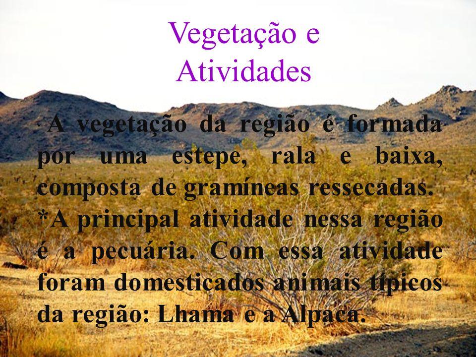 Vegetação e Atividades * A vegetação da região é formada por uma estepe, rala e baixa, composta de gramíneas ressecadas. *A principal atividade nessa