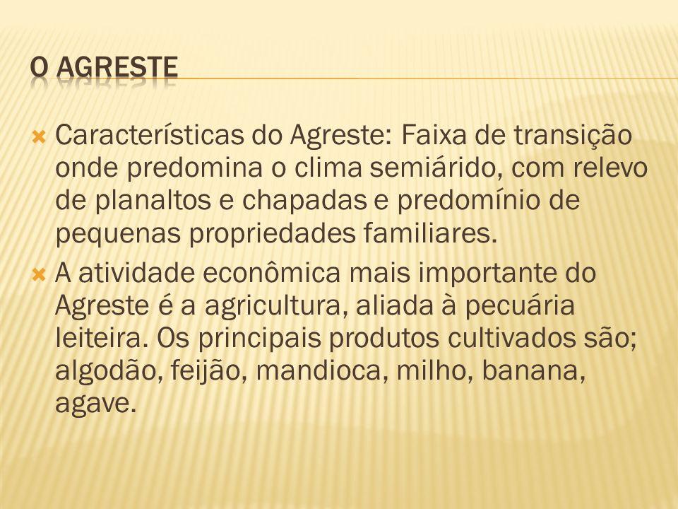 Características do Agreste: Faixa de transição onde predomina o clima semiárido, com relevo de planaltos e chapadas e predomínio de pequenas proprieda