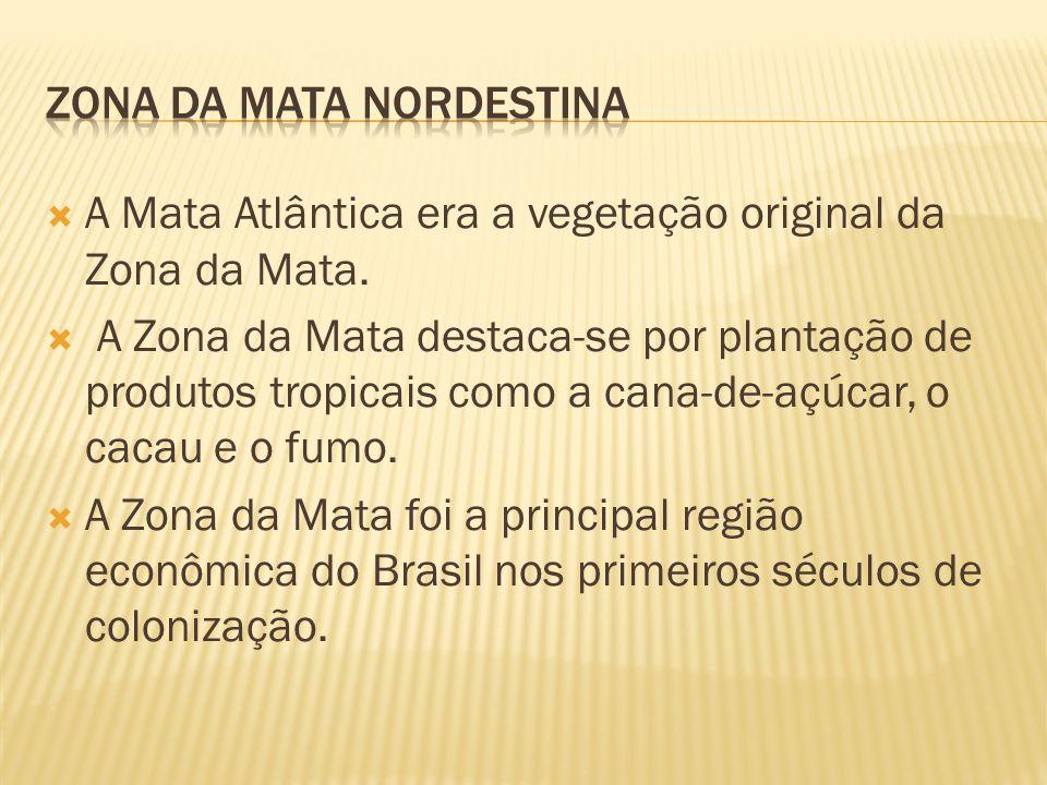 A Mata Atlântica era a vegetação original da Zona da Mata. A Zona da Mata destaca-se por plantação de produtos tropicais como a cana-de-açúcar, o caca