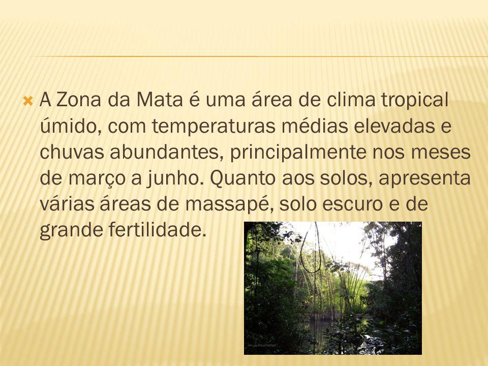 A Zona da Mata é uma área de clima tropical úmido, com temperaturas médias elevadas e chuvas abundantes, principalmente nos meses de março a junho. Qu