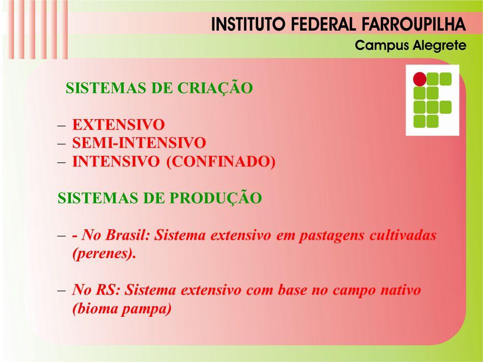 SISTEMAS DE CRIAÇÃO –EXTENSIVO –SEMI-INTENSIVO –INTENSIVO (CONFINADO) SISTEMAS DE PRODUÇÃO –- No Brasil: Sistema extensivo em pastagens cultivadas (perenes).