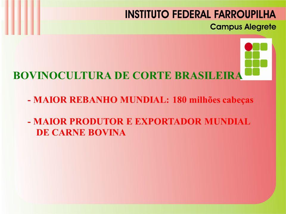 BOVINOCULTURA DE CORTE BRASILEIRA - MAIOR REBANHO MUNDIAL: 180 milhões cabeças - MAIOR PRODUTOR E EXPORTADOR MUNDIAL DE CARNE BOVINA