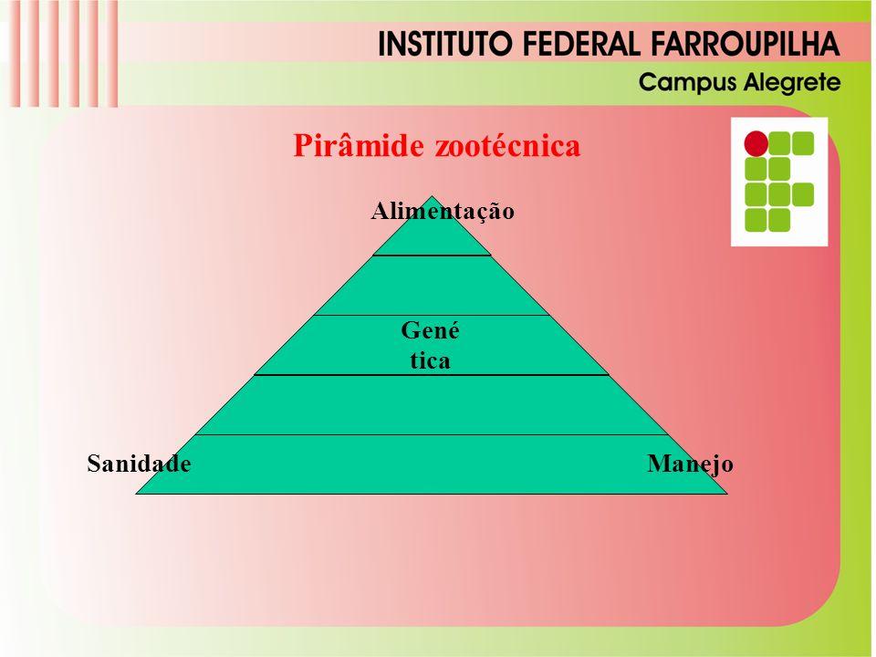 Genética Sanidade Manejo Alimentação Pirâmide zootécnica