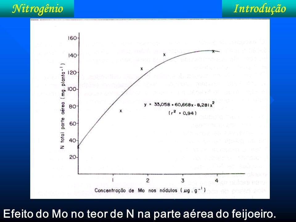 IntroduçãoNitrogênio Efeito do Ca na atividade da nitrogenase no teor de N na parte aérea do feijoeiro.
