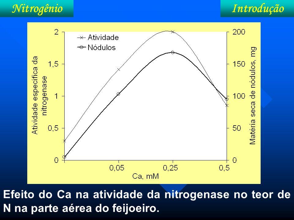 IntroduçãoNitrogênio Ca na produção de biomassa e no numero de nódulos (Solução nutritiva)