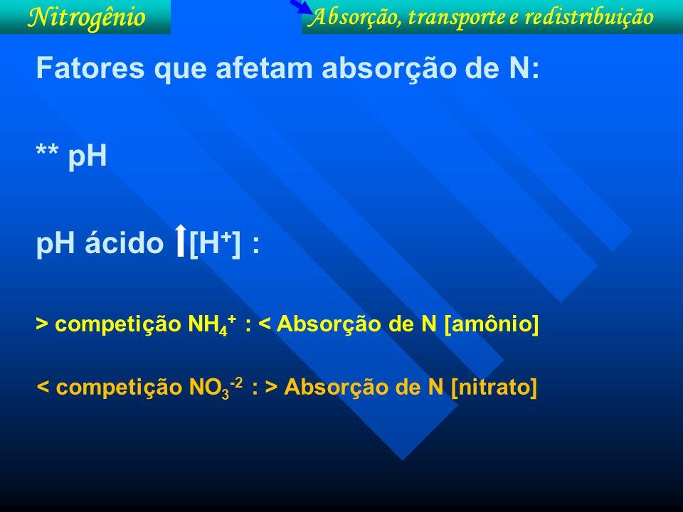 NO 3 -- 2 H + ATP 1 H + Alcalinização do meio NH 4 + 1 H + ATP 2 H + Acidificação do meio + -- + + + + + + + Absorção de nitratoAbsorção de amônio [H + ]
