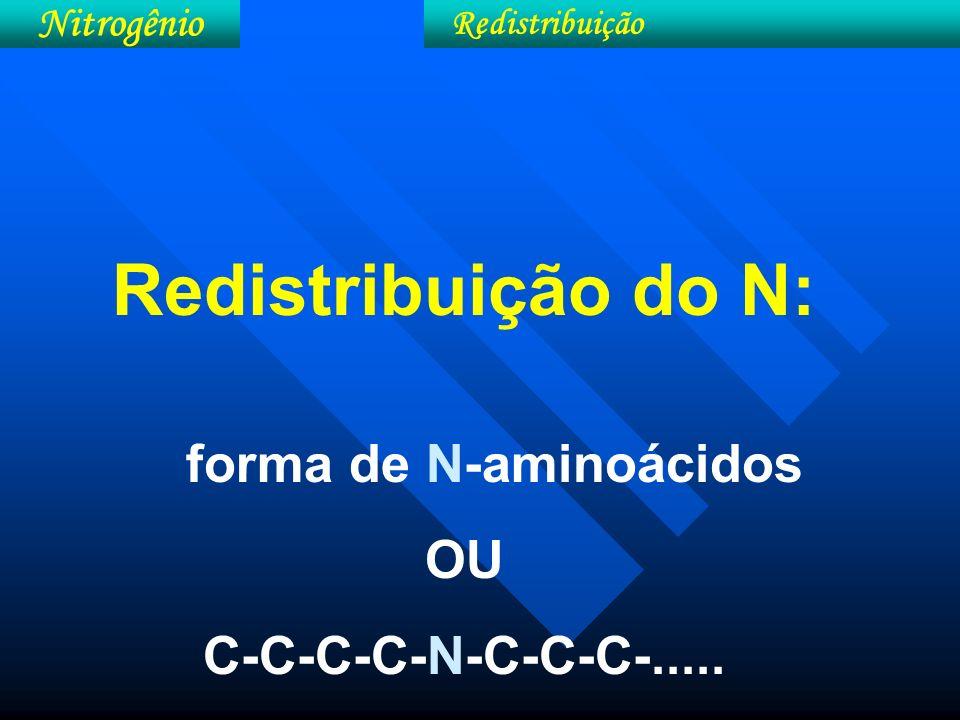 Metabolismo do N nas plantas: ** redução assimilatória do nitrato ** incorporação do nitrogênio Nitrogênio Metabolismo