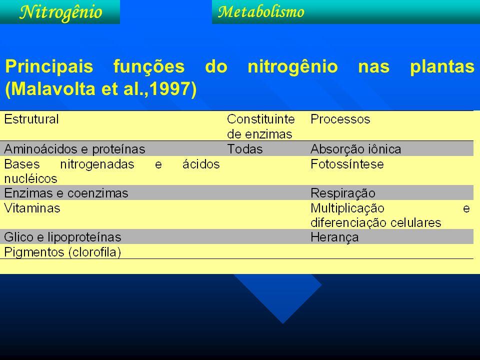 Taxa de assimilação de CO 2 e produção de biomassa em função do conteúdo foliar de N do milho (b) e relação entre a produção de grãos e a duração da área foliar verde (DAFV) no milho, no período de 63 a 125 dias após o plantio (b) (Wolfe et al., 1988) Nitrogênio Metabolismo