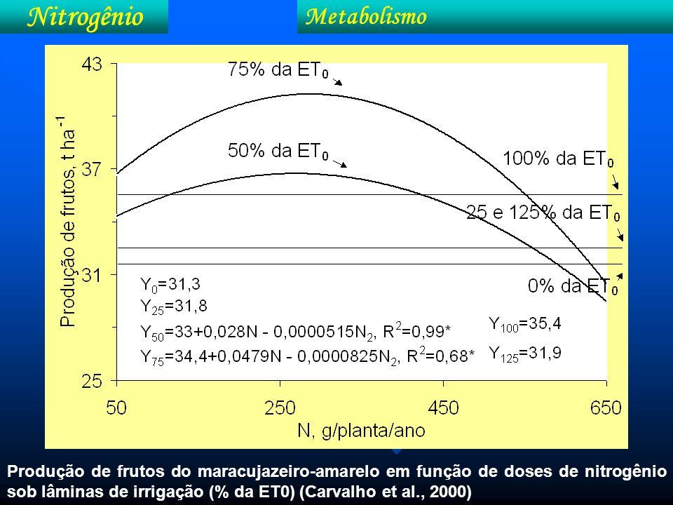 Nitrogênio Metabolismo (FAO)
