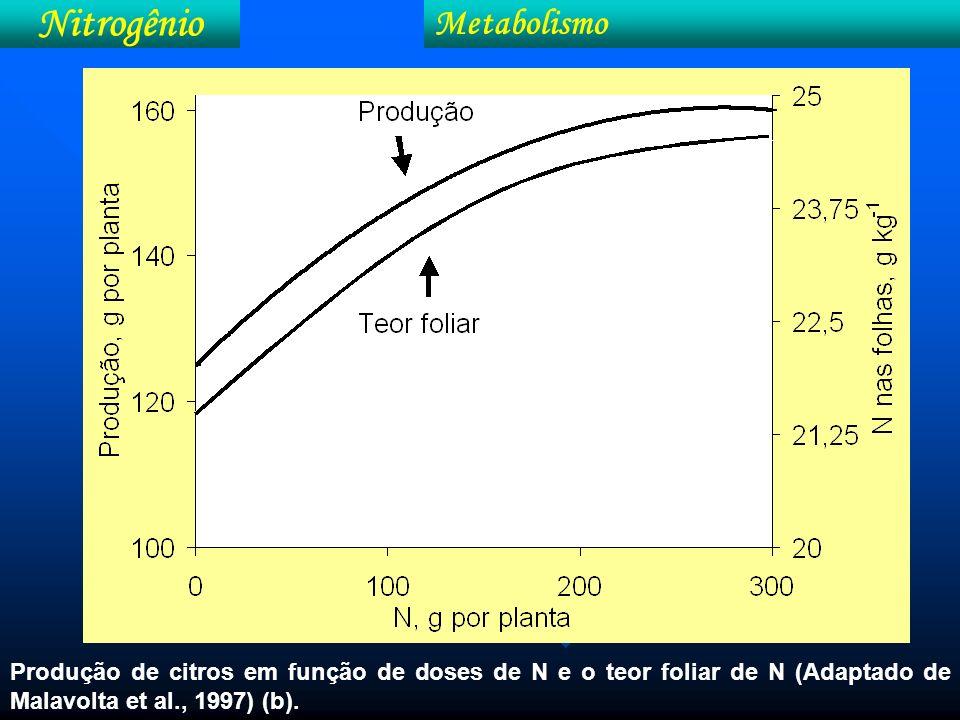 Nitrogênio Exigências nutricionais Tabela 21.