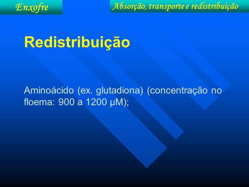 Absorção, transporte e redistribuição Enxofre Redistribuição Aminoácido (ex. glutadiona) (concentração no floema: 900 a 1200 µM);
