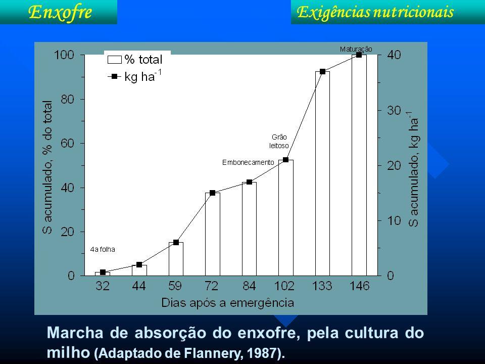 Marcha de absorção do enxofre, pela cultura do milho (Adaptado de Flannery, 1987). Exigências nutricionais Enxofre