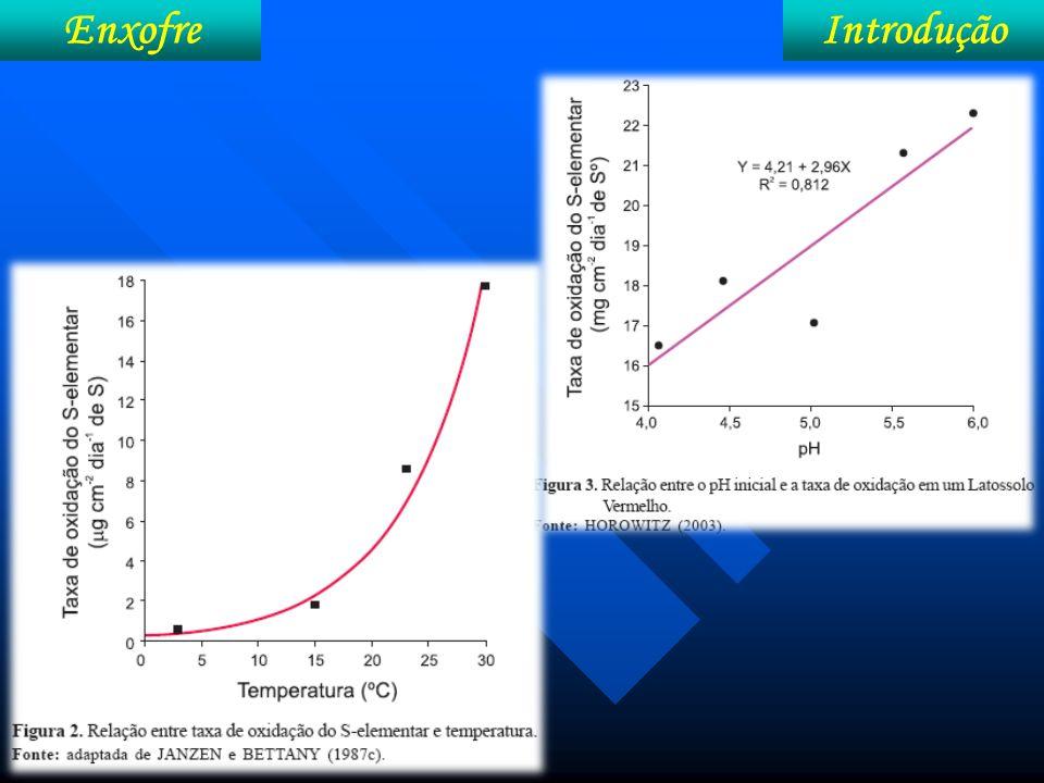 Enxofre Metabolismo Cisteína – deriva-se em: S-aminoácidos (cisteína, metionina); proteínas; sulfolipídeos e coenzimas.