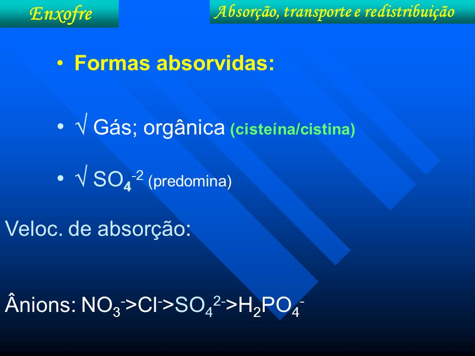 Formas absorvidas: Gás; orgânica (cisteína/cistina) SO 4 -2 (predomina) Absorção, transporte e redistribuição Enxofre Veloc. de absorção: Ânions: NO 3