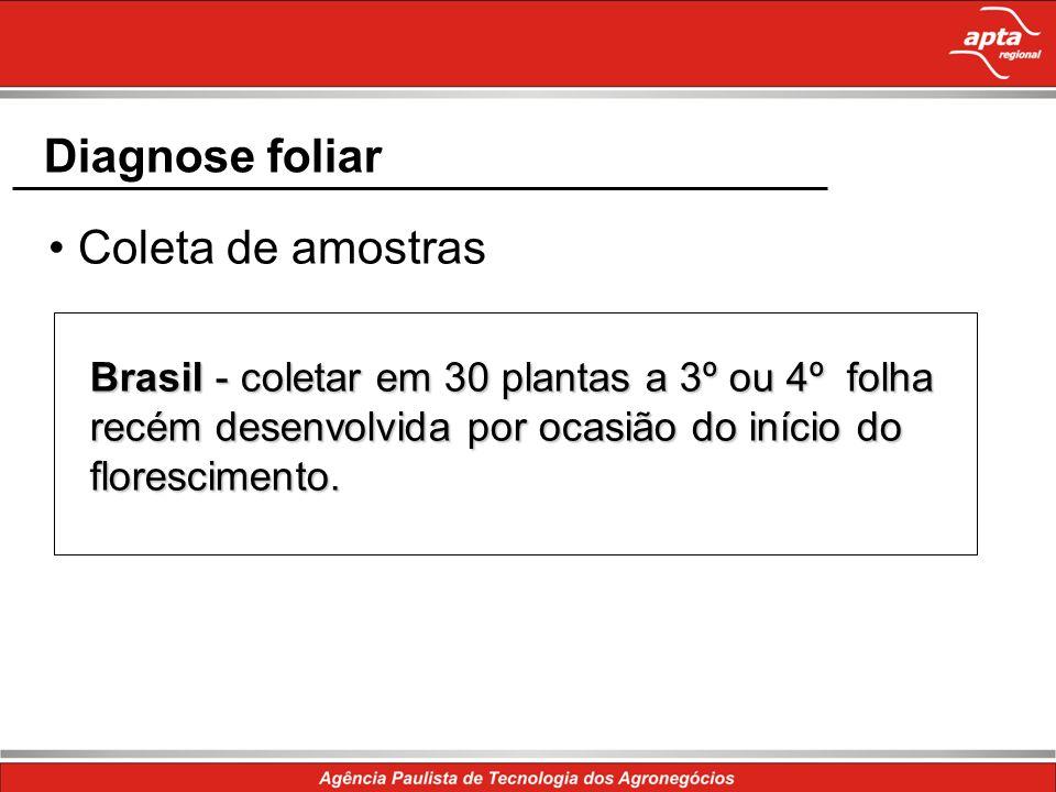 Diagnose foliar Brasil - coletar em 30 plantas a 3º ou 4º folha recém desenvolvida por ocasião do início do florescimento. Coleta de amostras