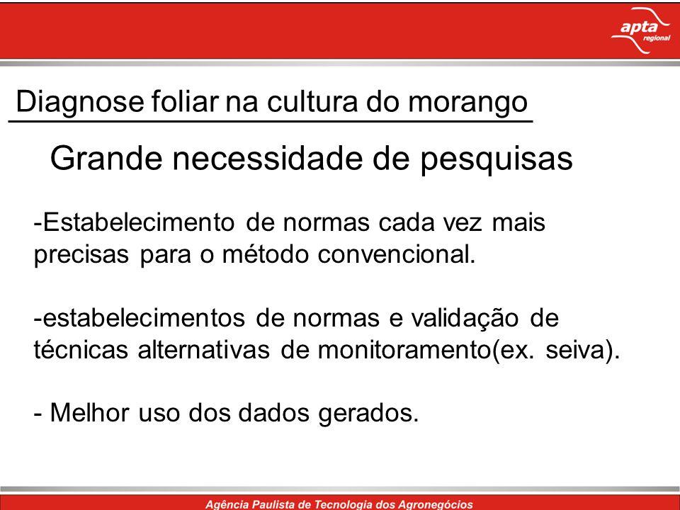 Diagnose foliar na cultura do morango Grande necessidade de pesquisas -Estabelecimento de normas cada vez mais precisas para o método convencional. -e