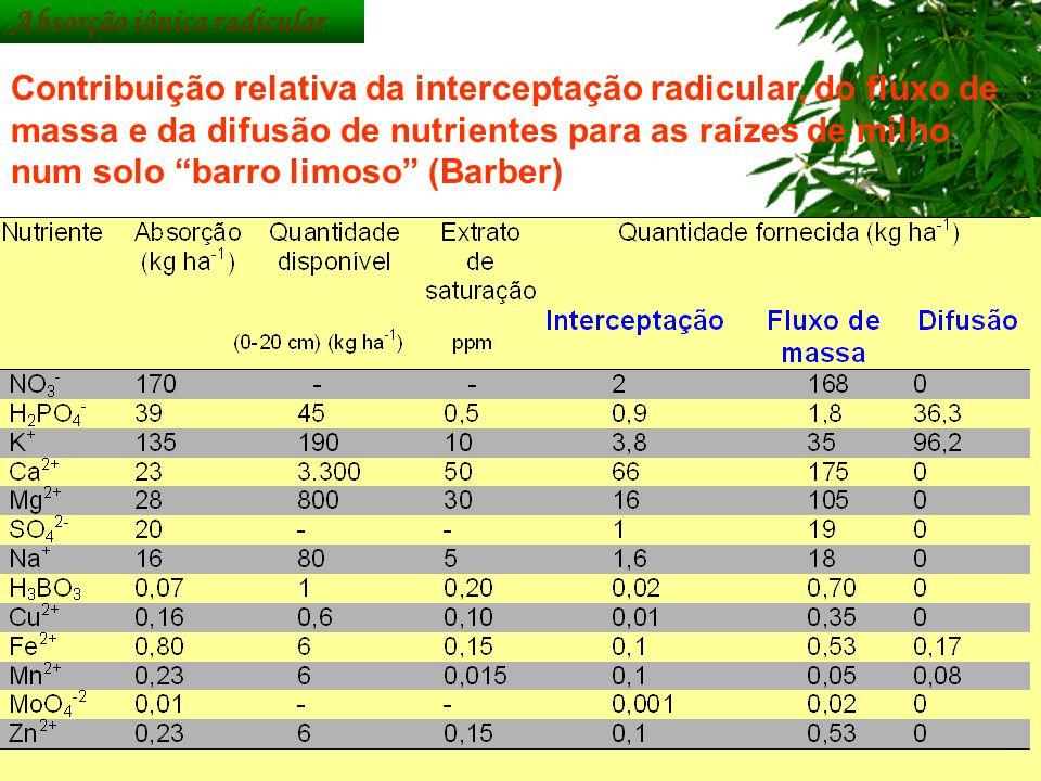 Contribuição relativa da interceptação radicular, do fluxo de massa e da difusão de nutrientes para as raízes de milho num solo barro limoso (Barber)
