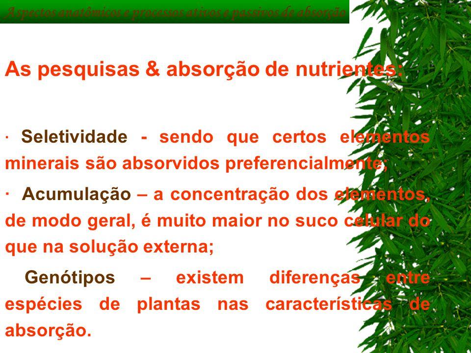 Aspectos anatômicos e processos ativos e passivos de absorção As pesquisas & absorção de nutrientes: · Seletividade - sendo que certos elementos miner