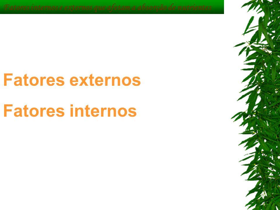 Fatores internos e externos que afetam a absorção de nutrientes Fatores externos Fatores internos