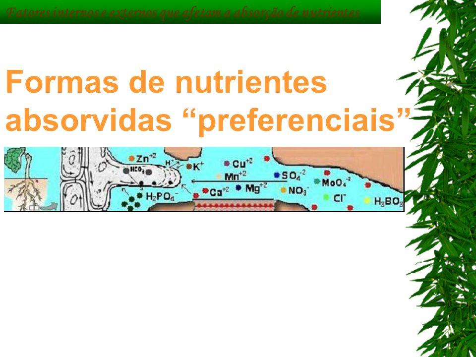 Fatores internos e externos que afetam a absorção de nutrientes Formas de nutrientes absorvidas preferenciais