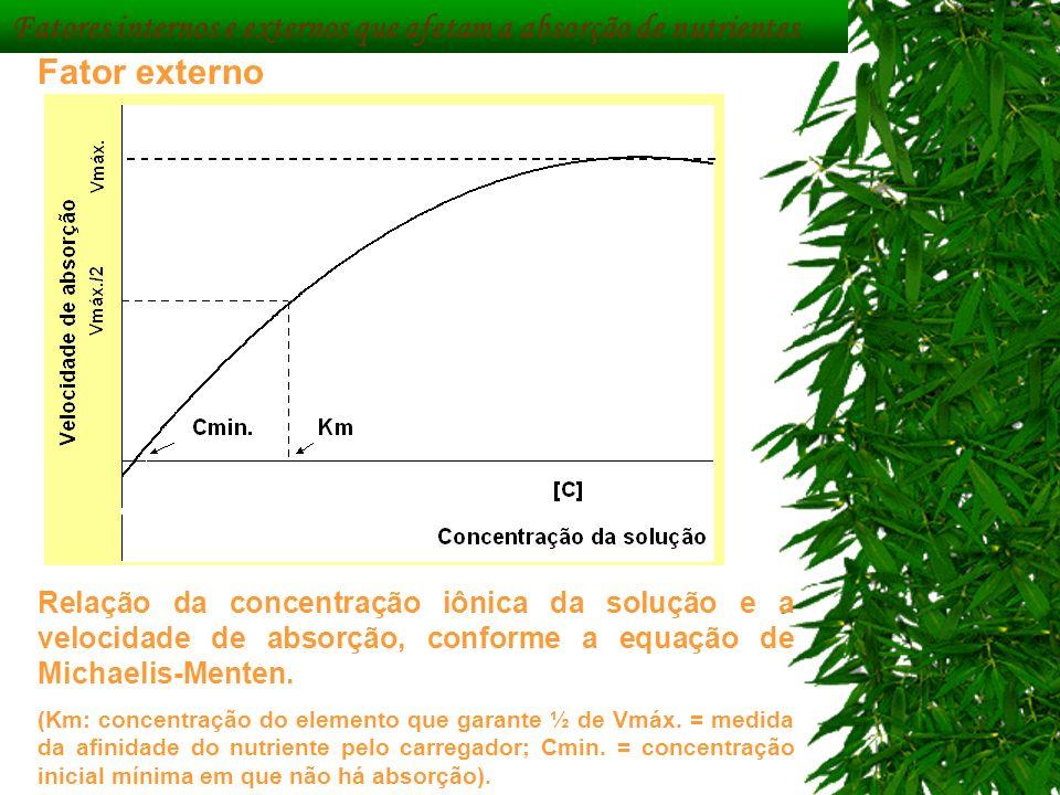 Fatores internos e externos que afetam a absorção de nutrientes Fator externo Relação da concentração iônica da solução e a velocidade de absorção, co