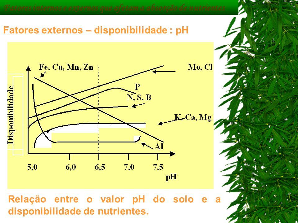 Fatores externos – disponibilidade : pH Relação entre o valor pH do solo e a disponibilidade de nutrientes. Fatores internos e externos que afetam a a
