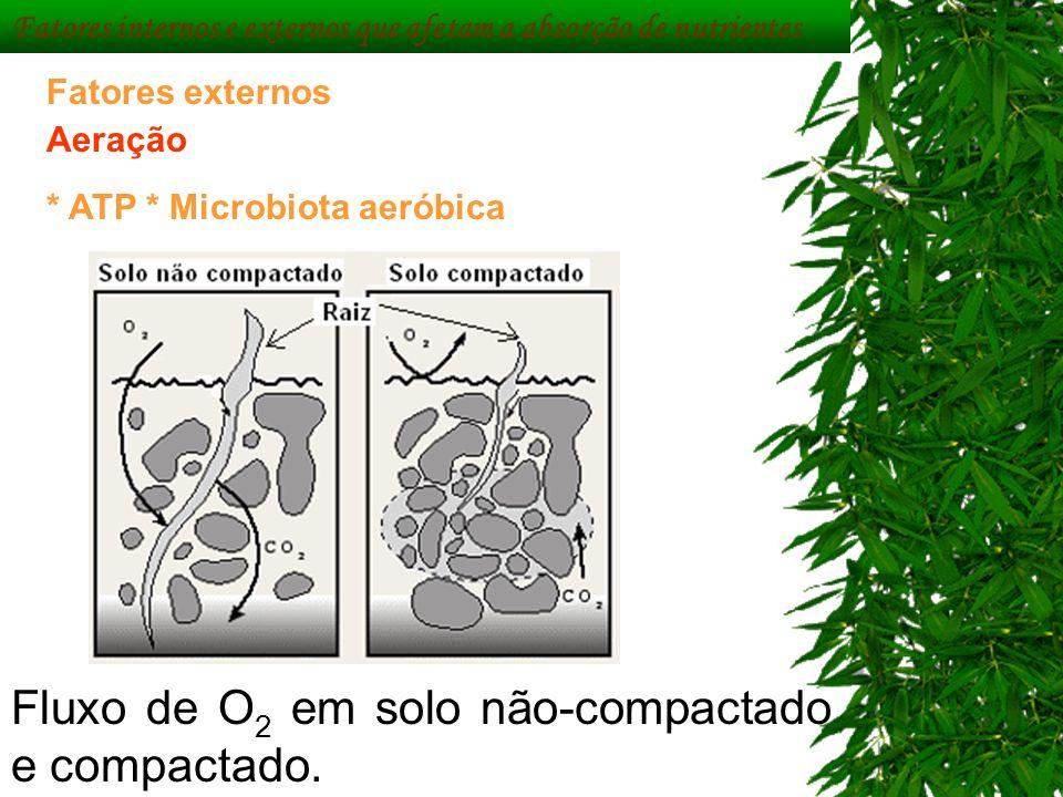 Fluxo de O 2 em solo não-compactado e compactado. Fatores externos Aeração * ATP * Microbiota aeróbica Fatores internos e externos que afetam a absorç