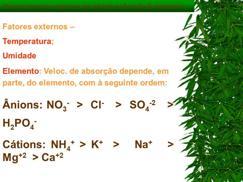 Fatores externos – Temperatura; Umidade Elemento: Veloc. de absorção depende, em parte, do elemento, com à seguinte ordem: Ânions: NO 3 - > Cl - > SO