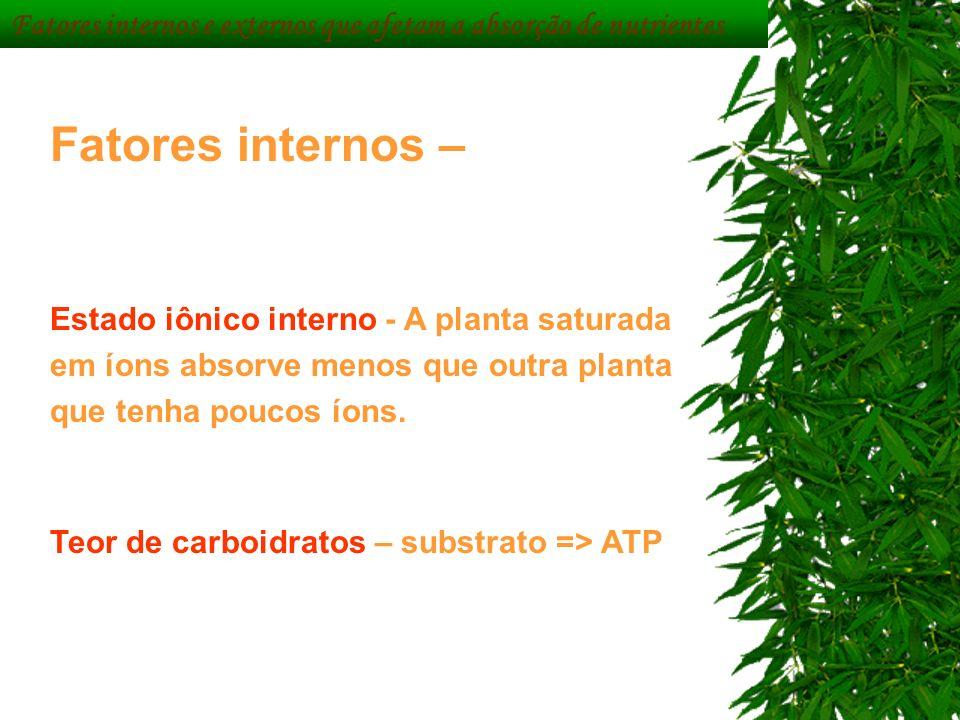 Fatores internos – Estado iônico interno - A planta saturada em íons absorve menos que outra planta que tenha poucos íons. Teor de carboidratos – subs