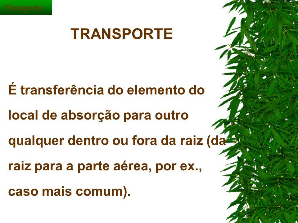 Transporte TRANSPORTE É transferência do elemento do local de absorção para outro qualquer dentro ou fora da raiz (da raiz para a parte aérea, por ex.