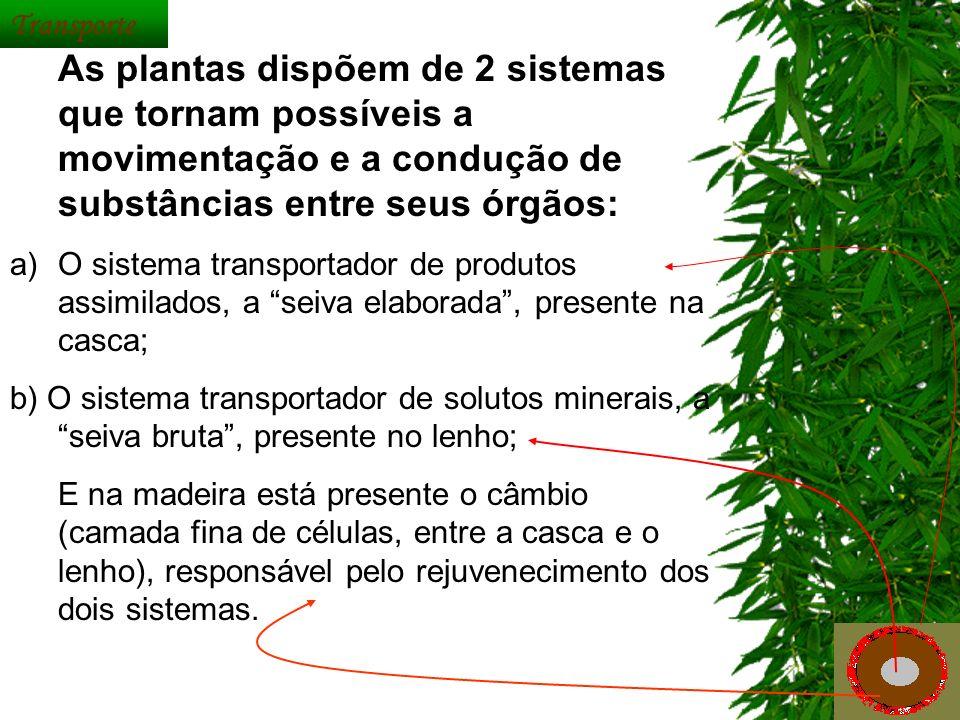 As plantas dispõem de 2 sistemas que tornam possíveis a movimentação e a condução de substâncias entre seus órgãos: a)O sistema transportador de produ