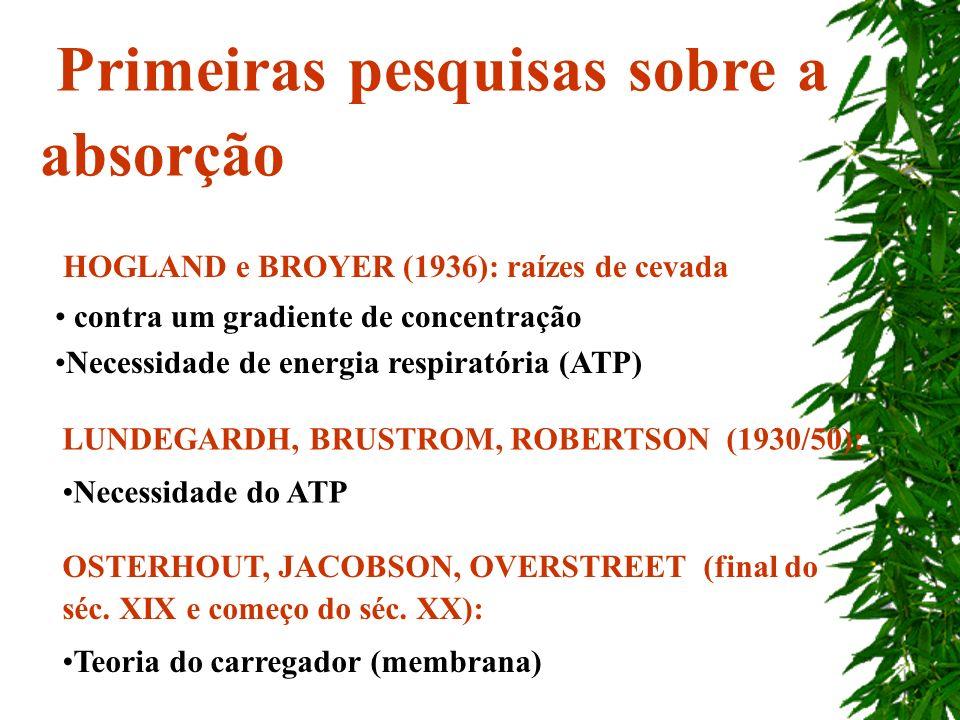HOGLAND e BROYER (1936): raízes de cevada contra um gradiente de concentração Necessidade de energia respiratória (ATP) Primeiras pesquisas sobre a ab